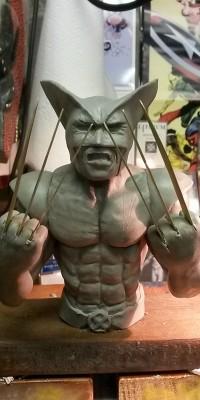 Wolverine_Custom_Sculpt_028